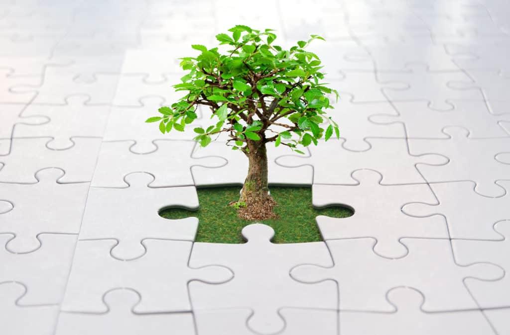 Echelon Health Evergreen Membership
