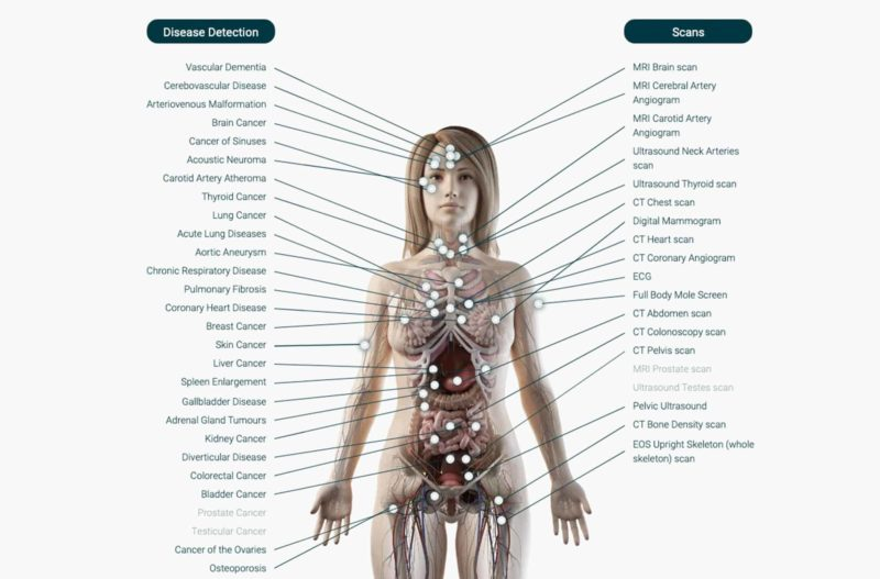the body map - Full body check up - echelon health