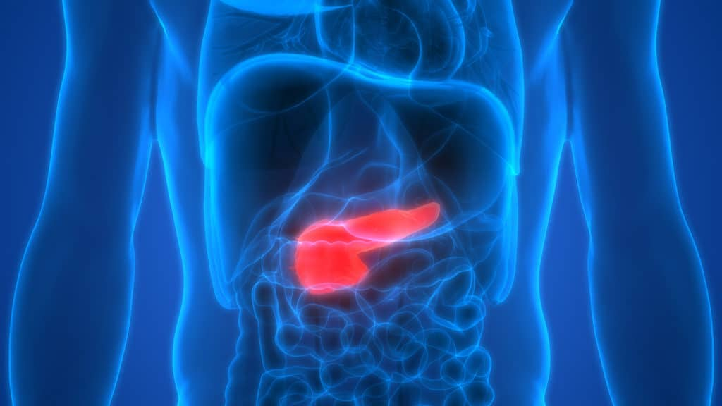 Pancreatic cancer diagnosis in London - Echelon Health